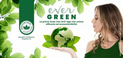 aestetic project evergreen
